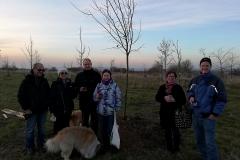 Winterlinde - unser gemeinsamer Jubilaeumsbaum